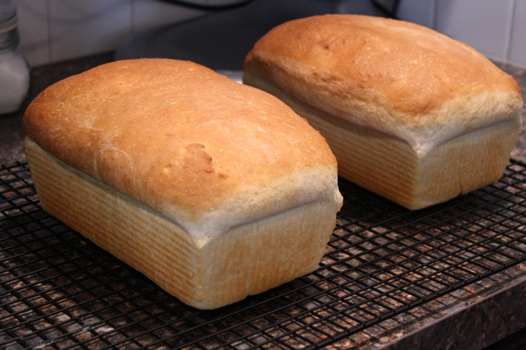Two loaves of white, fresh from the oven!